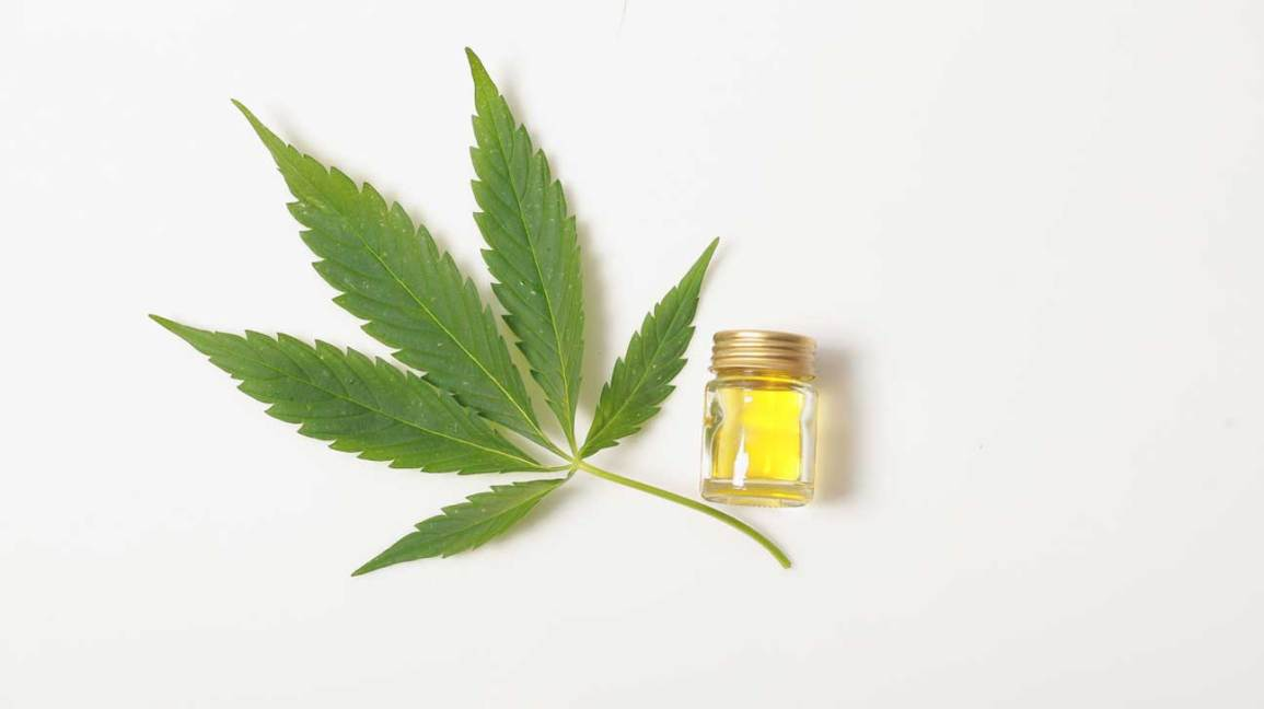 How to Get the Best Treatment for Dealing with Your Troubles? – CBD Royal Oils