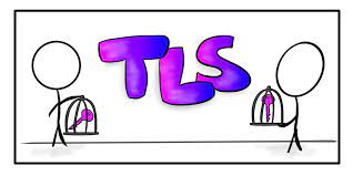 How are the TLS and SSL certificates essential? Four reasons